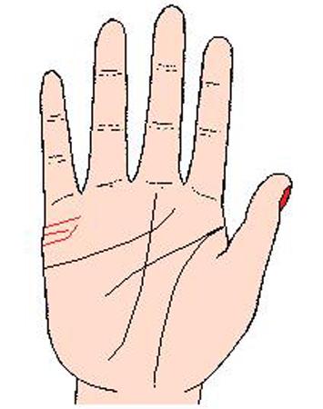 女人手相算命图解 纹线能否决定人的命运(5)