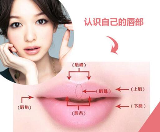 据嘴型涂口红 打造黄金比例唇(2)