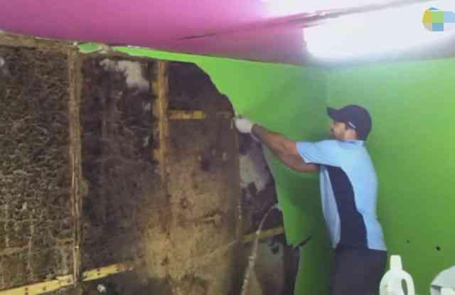 男子发现家中的墙壁无缘无故脱落 掀开后看呆了
