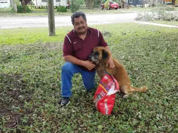 一只狗狗在飓风来临前走失,再发现它时所有人都笑喷