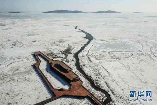 辽东湾呈现千里冰封壮美景观 网友:乍一看,以为是航空母舰! - 点击图片进入下一页