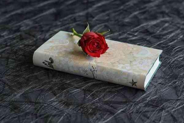 写一封情书给自己