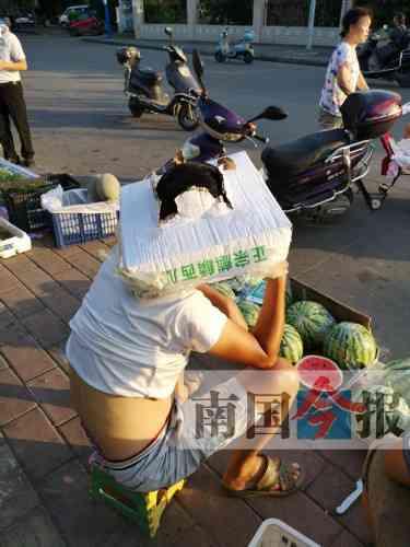 表情炎炎众生相来看看柳州暑天烈日吃松鼠别老婆表情包了(图)图片